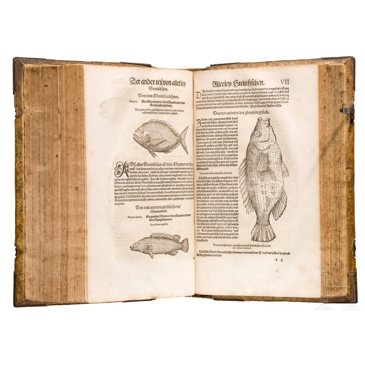 """Conrad Gesner, three main works in one volume: """"Vogelbuch, Thierbuch, Fischbuch"""", Zurich, Froschauer, 1557/1563"""