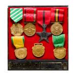 Sieben Abzeichen/Medaillen, Afghanistan, vor 1973, Deschler & Sohn, München, in Präsentationsbox
