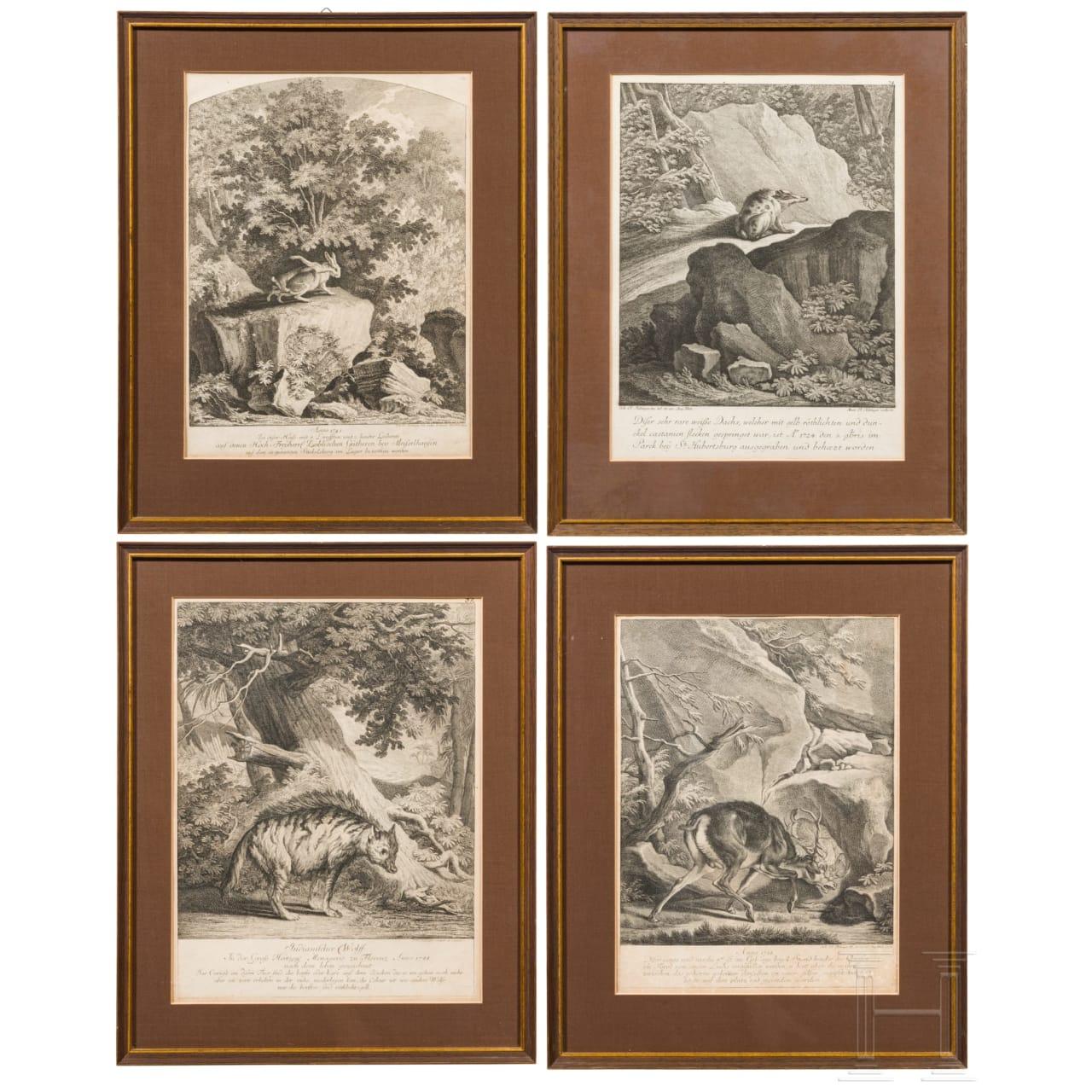 Johann Elias Ridinger, vier gerahmte Kupferstiche mit Wildtieren, Augsburg, um 1760