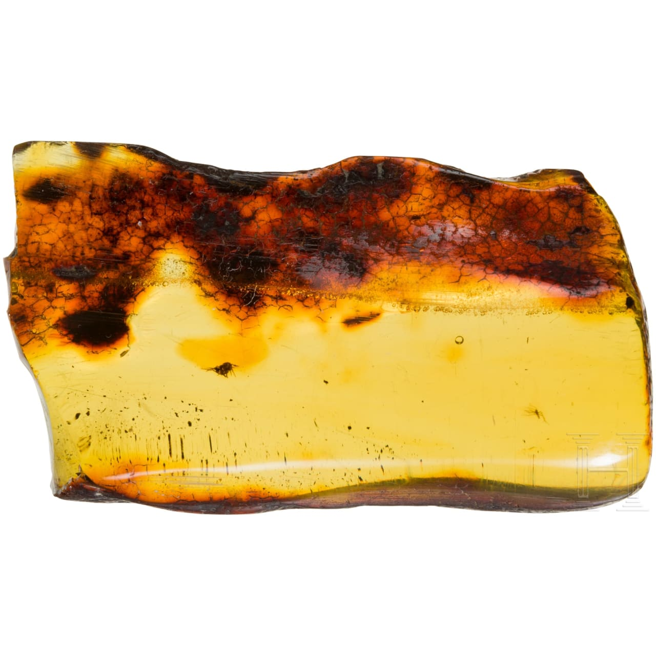 A large amber with inclusions