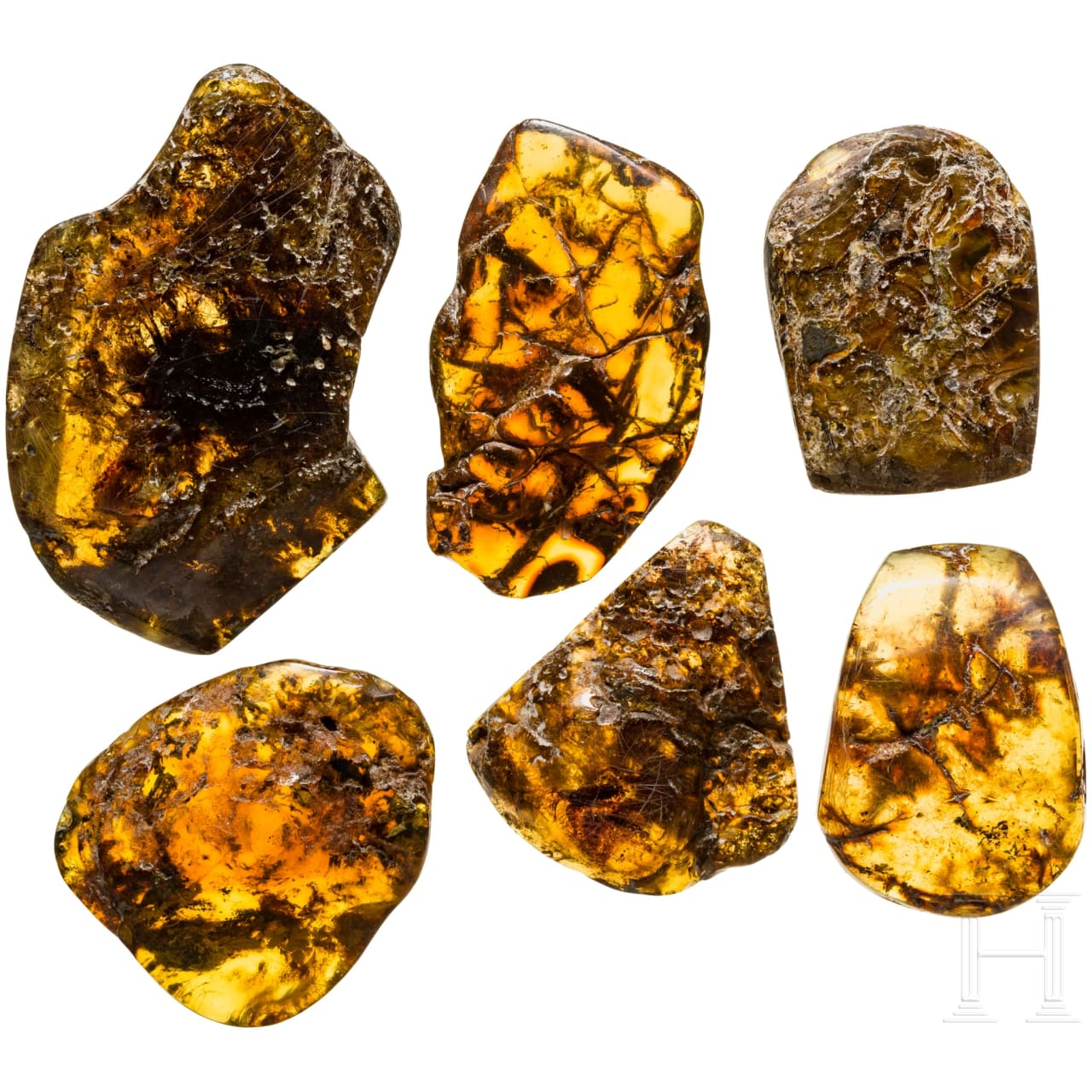 Six pieces of native amber