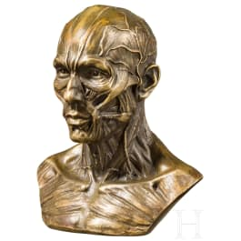 A probably German anatomical bust in bronze, circa 1900